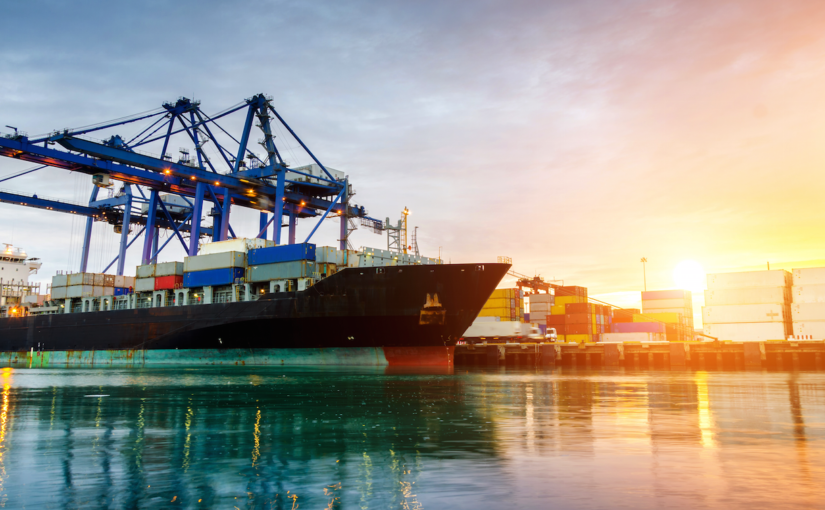 Everything You Need to Know About Port Automation